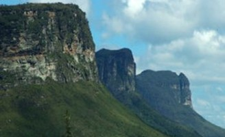 Mais um ano de emergência fitossanitária para a Bahia
