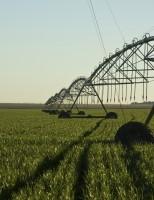 Agronegócio internacional é discutido no Brasil