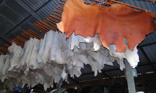 As exportações de couro brasileiro cresceram
