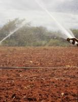 Perímetros irrigados do Vale do São Francisco vão economizar água