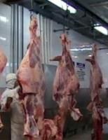 Os novos mercados para as carnes e os lácteos brasileiros