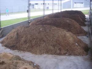 compostagem_de_cama_de_equinos