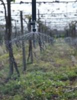 Período de escassez de água força adoção do sistema de Agricultura de precisão