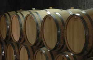 barris de vinhos