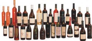 Vinhos-Finos-de-Altitude