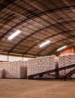 Governo volta a baixar preço do milho para regiões atingidas pela estiagem