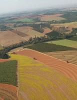 Ministério da Agricultura libera portarias orientando plantio de dez culturas de verão