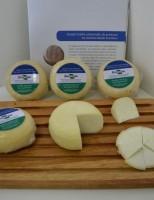 Mobilização dos produtores de queijos artesanais para pedir regulamentação do produto