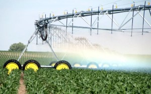 agronegocio irrigação