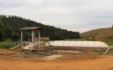 Esterco de animais garante a produção de biogás