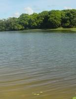 Região de irrigação no Ceará vai precisar de mais água nos próximos 25 anos