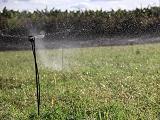 irrigação 1