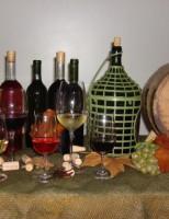 Um curso especial para quem quer aprender a fazer vinhos