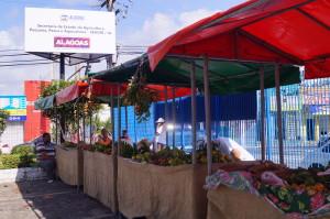 feira livre maceió 1