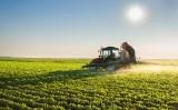 Estrangeiros vão poder investir no agronegócio brasileiro