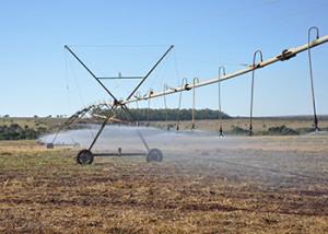 irrigação pivô