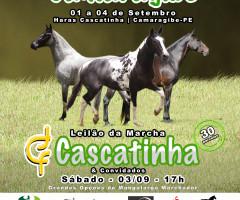 1ª Exposição e Leilão do Cavalo Mangalarga Marchado de Camaragibe