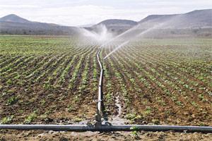 irrigação canos