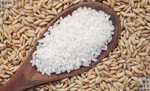 arroz-exportacao