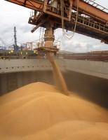 Os produtores brasileiros ganham mais com um aumento das exportações agropecuárias