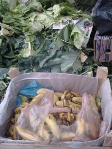 alimentos-desperdicio