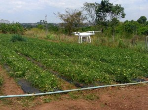 plantio-de-tomate-drones