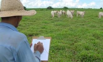 Propriedades rurais são mais rentáveis com sustentabilidade na agropecuária