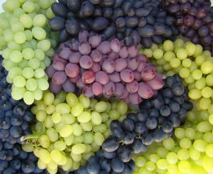 uvas-de-mesa-1