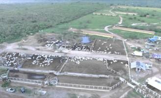 Copa dos Campeões de Vaquejada é em Pernambuco