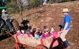 O agronegócio brasileiro registra crescimento do turismo rural