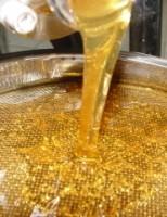 Cresce a produção brasileira de mel e produtores têm mais lucros