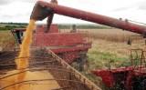 Safra brasileira de grãos deve crescer mais de 21% em 10 anos