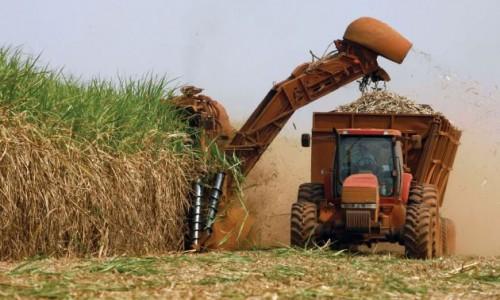 """<h2><a href=""""http://nordesterural.com.br/producao-de-cana-de-acucar-tera-uma-queda-na-safra-deste-ano/"""">Produção de cana-de-açúcar terá uma queda na safra deste ano</a></h2>Um levantamento divulgado pela Companhia Nacional de Abastecimento (Conab) revelou que a safra 2017/2018 de cana-de-açúcar está estimada em 646,34 milhões de toneladas. O valor representa queda de 1,7% em"""