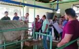 Abertas vagas para contratação de 300 veterinários