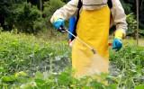 Orientações para uso correto dos agrotóxicos