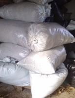 Fazer silo em saco é barato e ajuda a guardar alimento para o período de seca