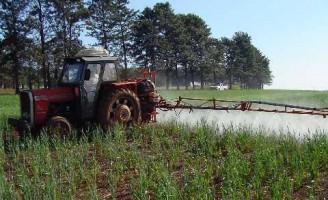 É possível fazer um defensivo agrícola natural usando extratos de plantas