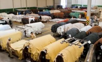 Desperdícios e erros no manejo das pelas provocam prejuízos no setor de couro