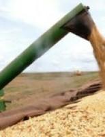 Agronegócio brasileiro exporta mais 23,7% em setembro