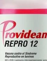 Produtor já pode prevenir a doença da Síndrome Reprodutiva Bovina