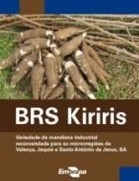 As variedades  de mandioca resistentes às pragas que atacam as plantações no Semiárido