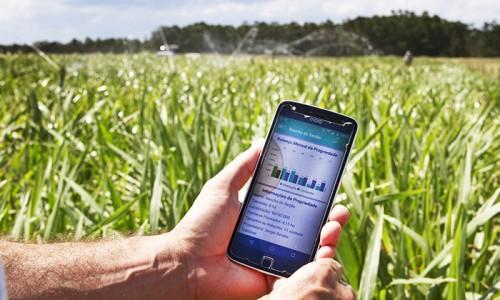 """<h2><a href=""""http://nordesterural.com.br/um-aplicativo-de-celular-ajuda-ao-produtor-controlar-a-oferta-de-alimento-ao-gado-o-ano-todo/"""">Um aplicativo de celular ajuda ao produtor controlar a oferta de alimento ao gado o ano todo</a></h2>É o aplicativo Pastejando, desenvolvido pela Embrapa e a Universidade Federal de Pelotas (UFPel). Com a nova tecnologia o produtor vai poder fazer o planejamento forrageiro da propriedade, etapa determinante"""
