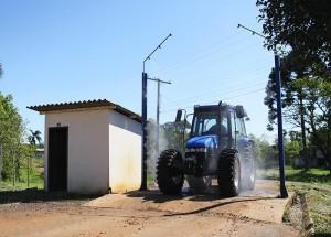 higiene na granja de suíno