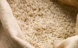 Marcado o leilão para venda de arroz pela Conab
