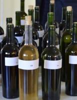 Agora é oficial: produtores de vinhos coloniais já estão registrados