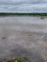 O rio Pajeú bota cheia no sertão