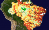 Várias regiões produtoras do Brasil são favorecidas pelo clima dos próximos dias