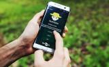 Um aplicativo para celular orienta na adubação e calagem do abacaxi, banana, citros e mandioca na região norte