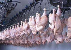 carne de frango pendurada
