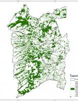 Bahia dá exemplo de preservação ambiental